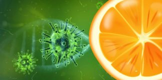 Coronavirus cell and orange